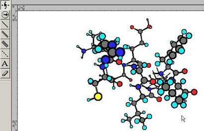 十肽菌素分子模型示例图