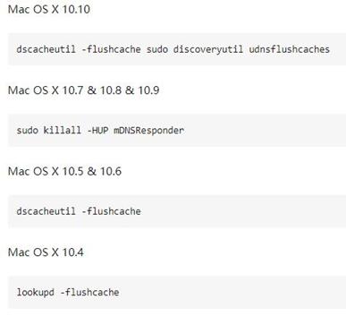 执行命令清除DNS缓存