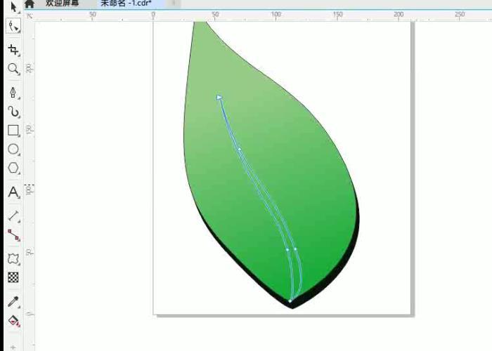 画出叶径的形状