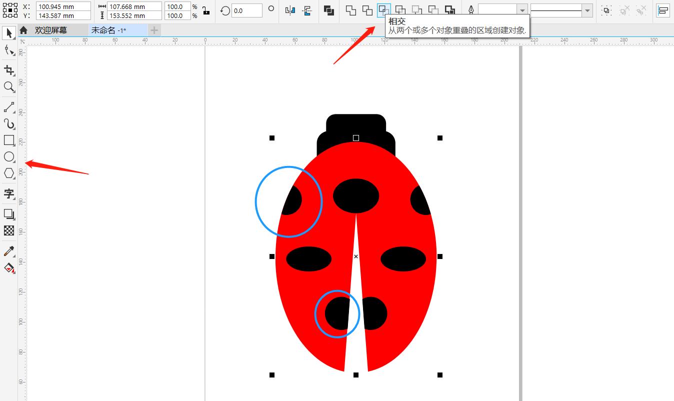 图6:瓢虫圆形花纹绘制