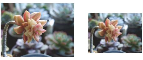 减小图像分辨率