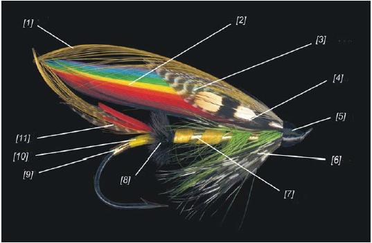 CDR鲑鱼毛钩剖析
