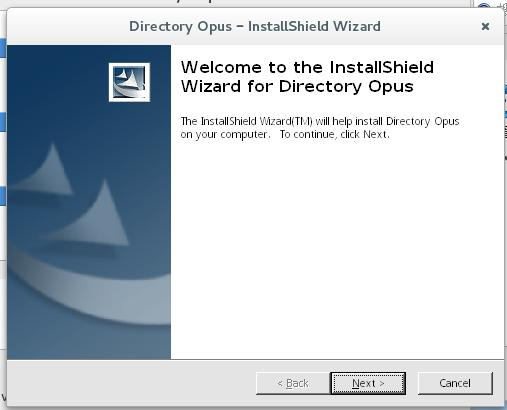 Windows 软件安装向导