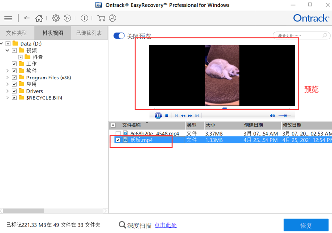 图4:预览视频