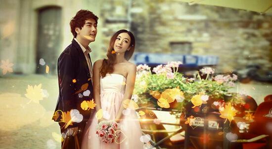 婚庆模板2