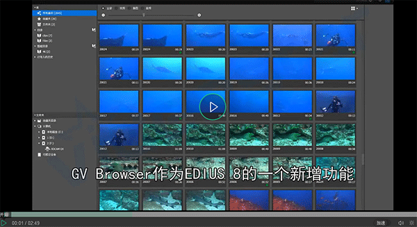 EDIUS 8 GV Browser视频教程