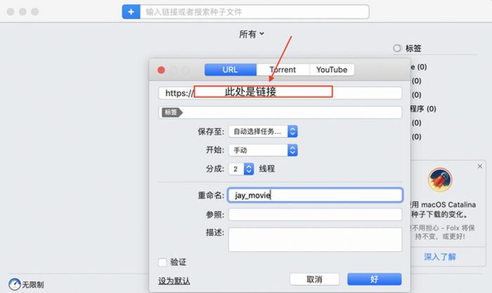 图2:粘贴要下载的视频链接界面