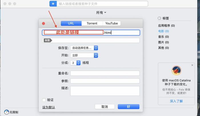 图3:粘贴视频链接界面
