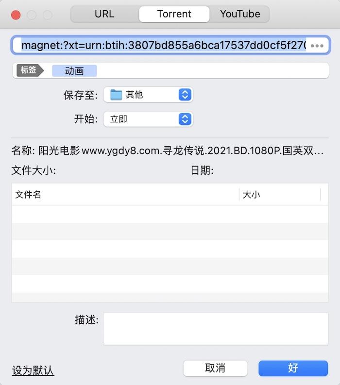 图2 Folx下载任务设置界面
