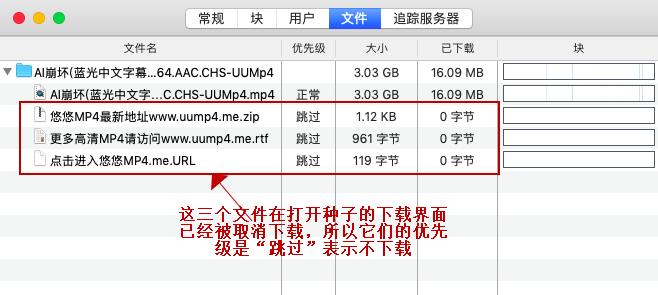 图5:文件信息界面