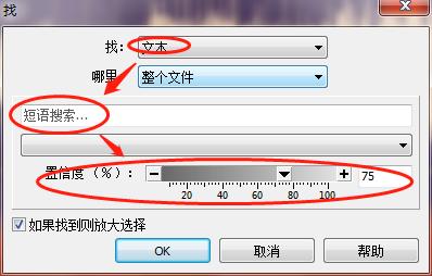 图四:查找文本时设置界面