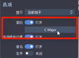 图2:选项界面