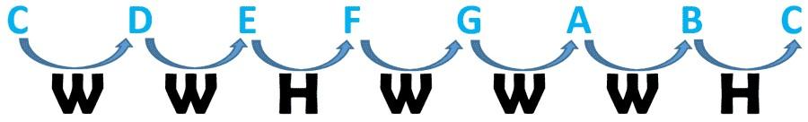 圖片3:C大調全音半音公式