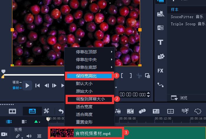 图6:视频参数设置图