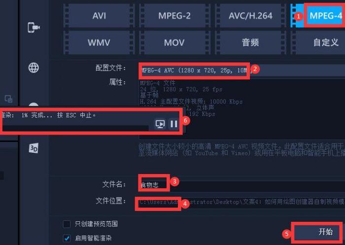 图10:视频导出参数设置
