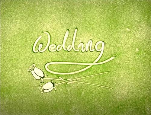 婚礼视频素材分享