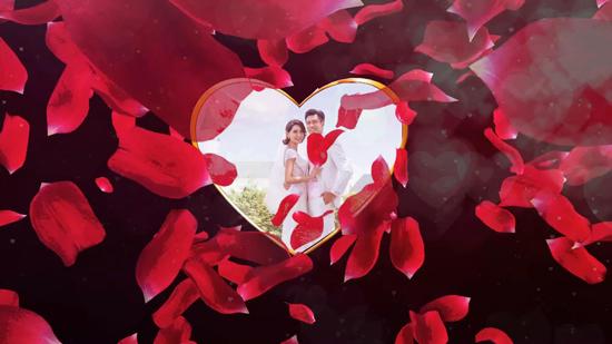 玫瑰花飞舞婚礼视频
