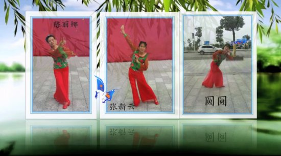 杜鹃花开广场舞