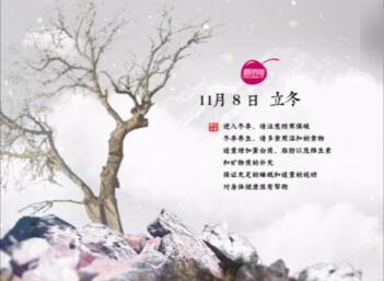 【会声会影x8】 二十四节气之立冬