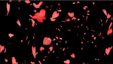 添加花瓣视频素材