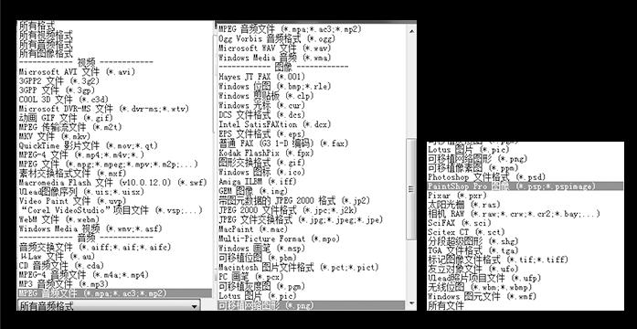 软件支持多种格式