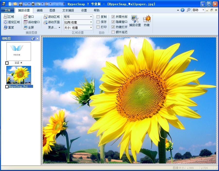 网站截图软件HyperSnap