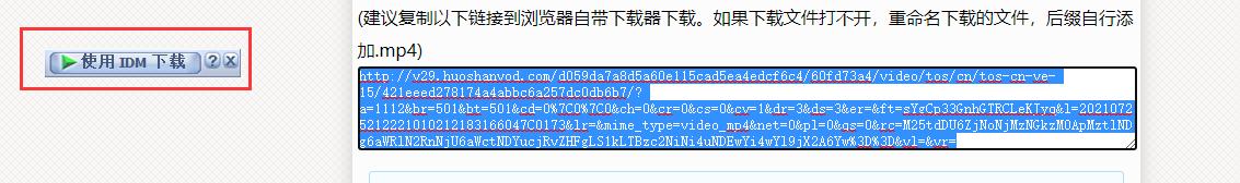 图片3:解析视频链接并用IDM下载
