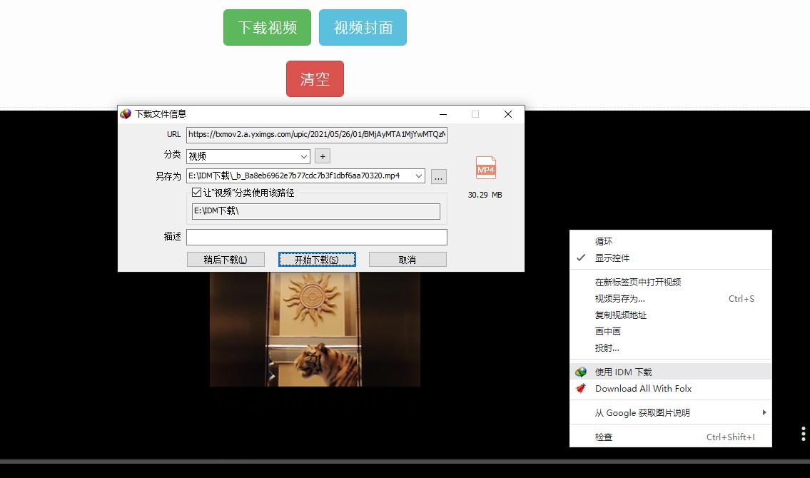 图3:启动下载设置弹窗界面