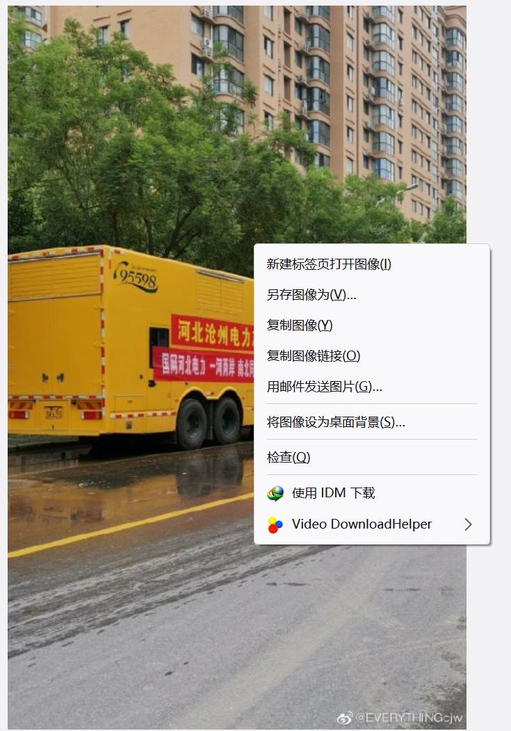 图2:在图片上右击选择使用IDM下载