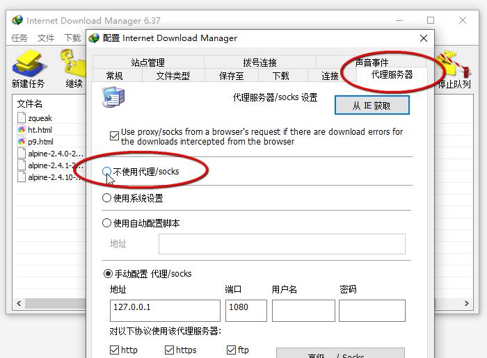 代理服务标签页的选项