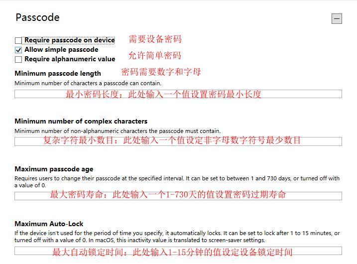 图6:passcode界面详解1