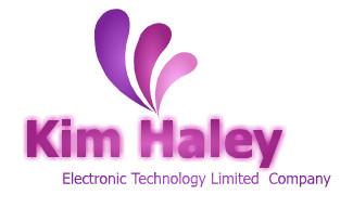 公司logo设计2