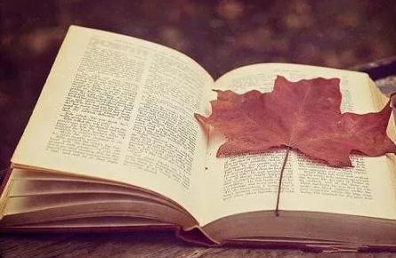 致爱学习的你:攻下山头需要策略,阅读书籍同样需要策略