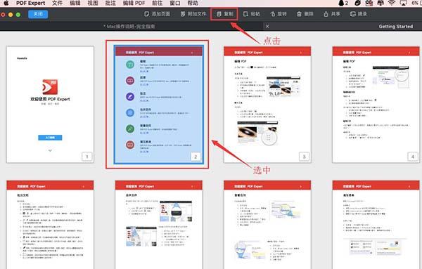 选中并复制PDF页面