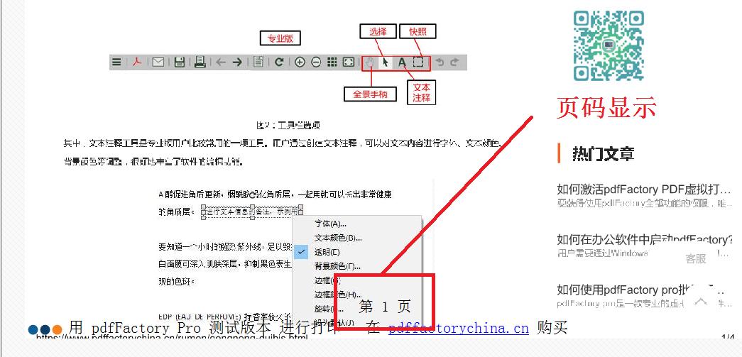 图3页码添加效果