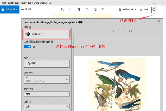 图2:用pdfFactory打开图片