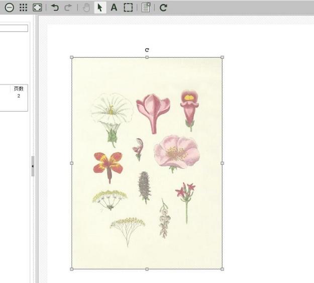 图7:粘贴其他图片