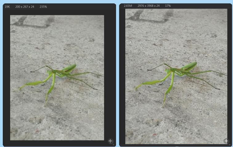 你必须知道的实用照片放大工具PhotoZoom