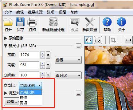 "PhotoZoom""宽高比""的设置"