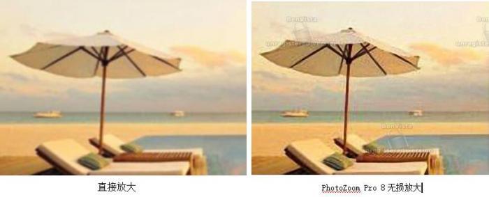图8:直接放大图片与PhotoZoom Pro 8放大图片对比