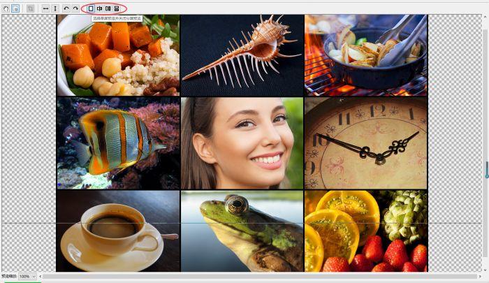 详解PhotoZoom三种分屏预览的使用方法