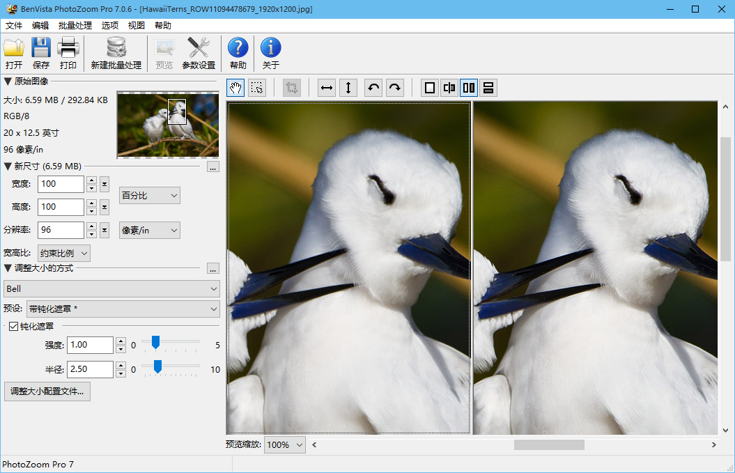PhotoZoom放大的图片效果怎么样?清不清晰?