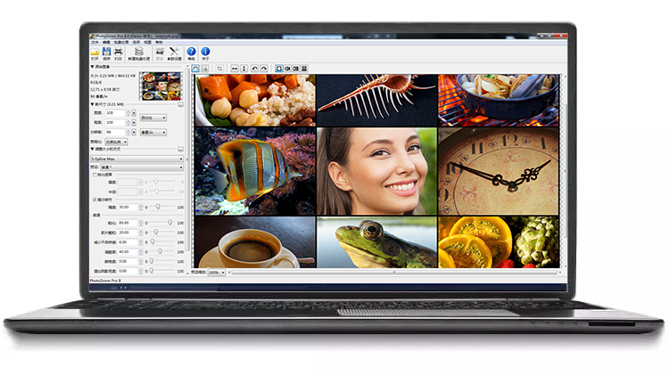 PhotoZoom Classic 8界面预览