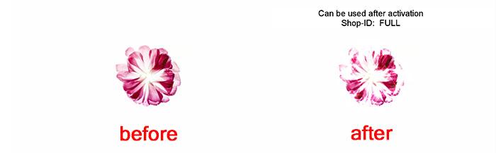 图4:添加滤镜前后对比