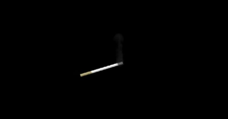 图10:香烟烟雾