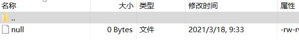 """图3:搜索出""""null""""文件"""