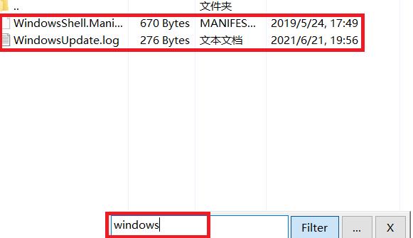 """图5:搜索带""""windows""""的文件"""