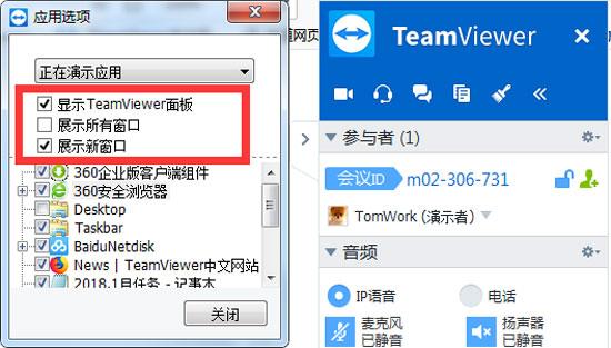TeamViewer画面共享高级选项设置
