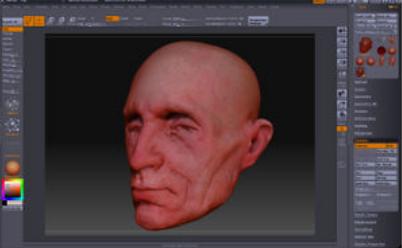 绘制头部模型