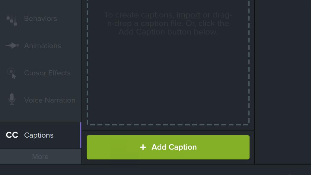 图1:Camtasia软件手动添加字幕